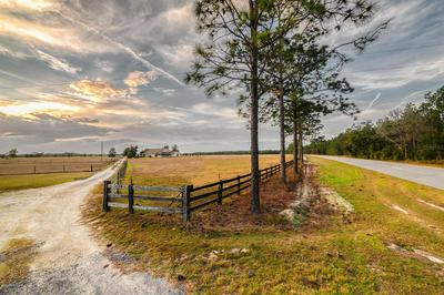16606 S COUNTY ROAD 53, LEE, FL 32059 - Photo 1