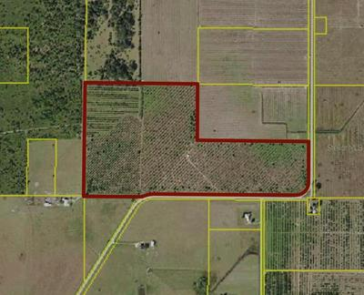 SW CO ROAD 661, ARCADIA, FL 34266 - Photo 1