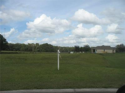 12706 MCINTOSH GROVES LN, Thonotosassa, FL 33592 - Photo 1
