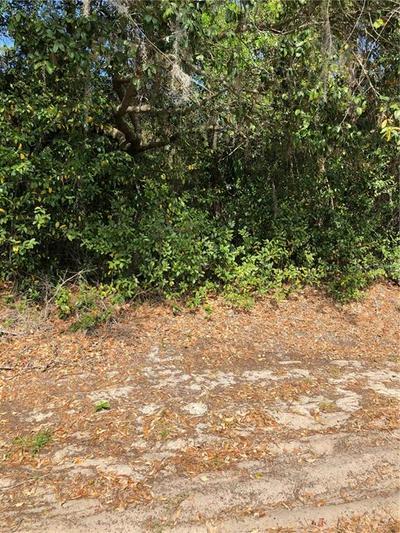WHITE HERON DRIVE, ORLANDO, FL 32808 - Photo 1