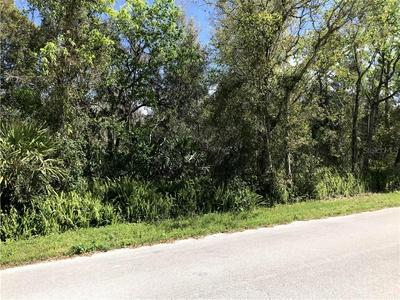 JAMES STREET, De Leon Springs, FL 32130 - Photo 1
