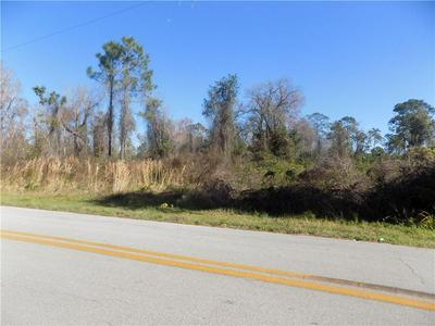 RAULERSON RD, SEVILLE, FL 32190 - Photo 2