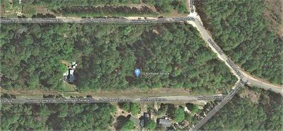 122 NORTHEAST TER, GEORGETOWN, FL 32139 - Photo 1