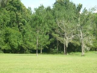 11315 N 301ST HIGHWAY, Thonotosassa, FL 33592 - Photo 2