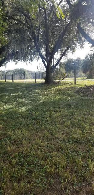 CONIGLIO DRIVE, Thonotosassa, FL 33592 - Photo 1