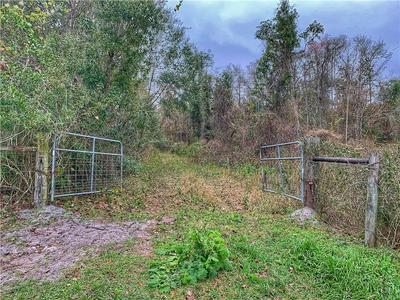 LAKE WINONA ROAD, De Leon Springs, FL 32130 - Photo 1