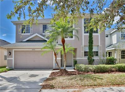 20052 NOB OAK AVE, TAMPA, FL 33647 - Photo 1