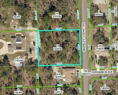 13127 MARBLED GODWIT RD, WEEKI WACHEE, FL 34614 - Photo 1