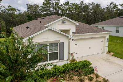 206 WOOD HOLLOW RD, DELAND, FL 32724 - Photo 1