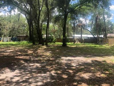 4782 MYRTLE VIEW DR W, Mulberry, FL 33860 - Photo 2