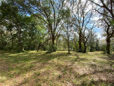 WHITAKER ROAD, Lutz, FL 33549 - Photo 2