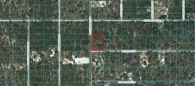 LOTS 25 & 26 SW PAPAYA, Dunnellon, FL 34431 - Photo 1