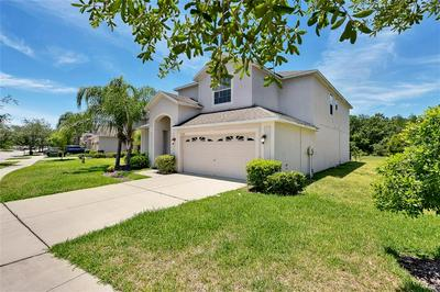 20508 CAROLINA CHERRY CT, TAMPA, FL 33647 - Photo 2