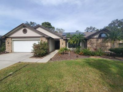 3629 NETTLE CREEK CT, Holiday, FL 34691 - Photo 1