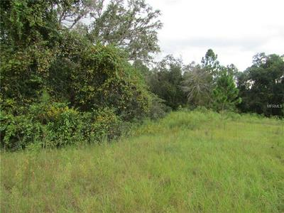 WESTBROCK ROAD, Astatula, FL 34705 - Photo 2