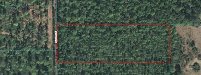 TRACT 1 NE 130TH AVENUE, Fort Mc Coy, FL 32134 - Photo 1