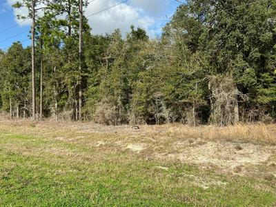 0 NE 27 ALT HIGHWAY, BRONSON, FL 32621 - Photo 2