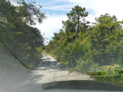 653 NICHELE BLVD, LAKE PLACID, FL 33852 - Photo 1