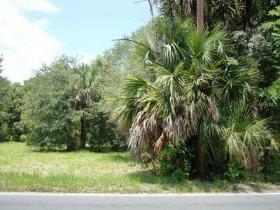 SR 46/ 435 ROAD, Mount Plymouth, FL 32776 - Photo 1