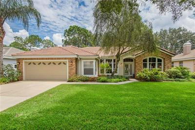 17849 GREEN WILLOW DR, TAMPA, FL 33647 - Photo 1