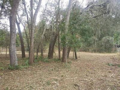 COUNTY ROAD 561, Astatula, FL 34705 - Photo 2