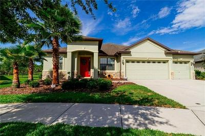 20011 OUTPOST POINT DR, TAMPA, FL 33647 - Photo 1