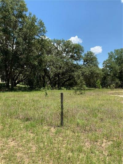 41906 OUTLAW LN, Weirsdale, FL 32195 - Photo 2