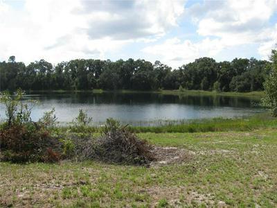 MALAUKA LOOP, Ocklawaha, FL 32179 - Photo 1
