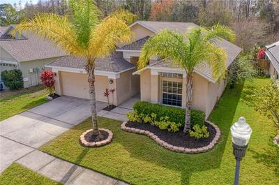 14338 MOON FLOWER DR, TAMPA, FL 33626 - Photo 1