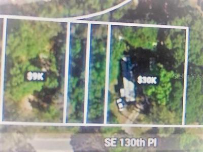 00 SE 130TH PLACE, Ocklawaha, FL 32179 - Photo 2