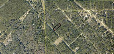 HIGHWAY 349 HWY, O BRIEN, FL 32071 - Photo 1