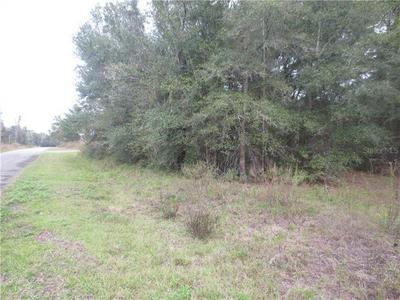 0 MAGNOLIA DR., OCKLAWAHA, FL 32179 - Photo 2