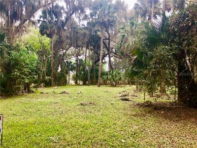 00 158TH PLACE #LOT 21, UMATILLA, FL 32784 - Photo 2