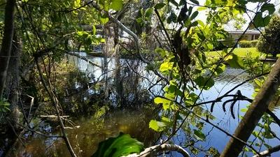 13401 PALM DR, ASTATULA, FL 34705 - Photo 2