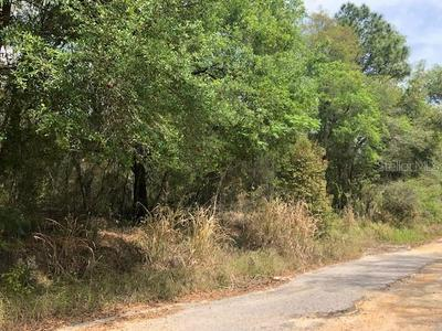 ROUND LAKE ROAD, Zellwood, FL 32798 - Photo 2