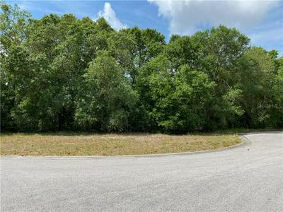 11904 SUGARBERRY DR, Riverview, FL 33569 - Photo 2