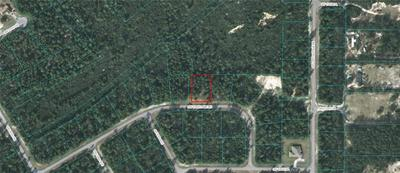 00000 SW 176TH LANE ROAD, OCALA, FL 34473 - Photo 2
