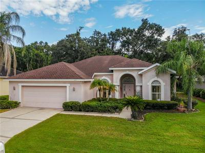 4371 WINDING OAKS CIR, Mulberry, FL 33860 - Photo 1
