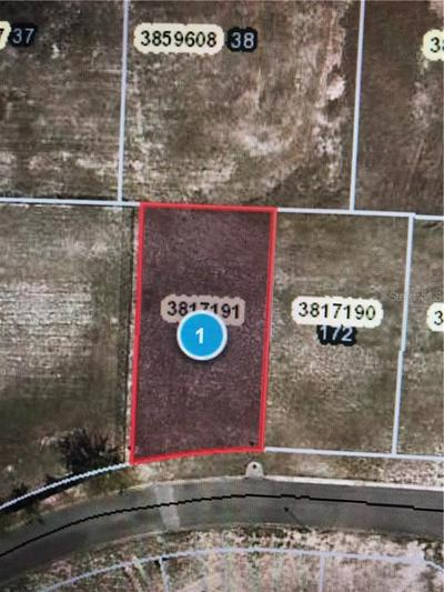 25131 ALAMANDA DR # 173, ASTATULA, FL 34705 - Photo 1