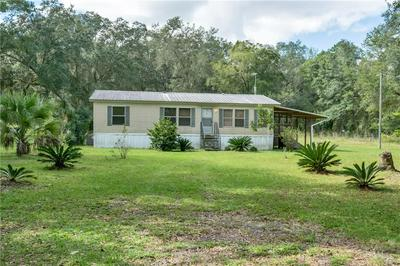 2410 SE COUNTY ROAD 219A, HAWTHORNE, FL 32640 - Photo 1