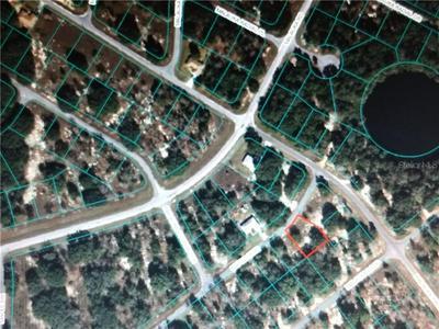 MAPLE CRSE, OCKLAWAHA, FL 32179 - Photo 1