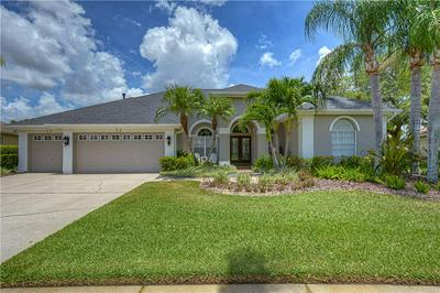 12107 CLEAR HARBOR DR, Tampa, FL 33626 - Photo 1