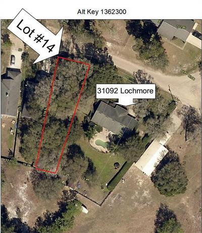 LOT 14 LOCHMORE CIRCLE, Mount Plymouth, FL 32776 - Photo 1