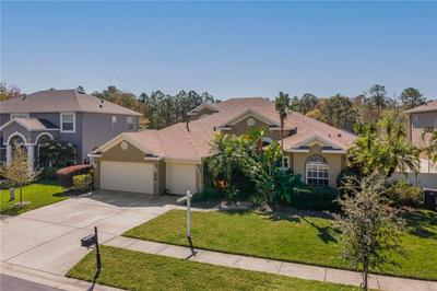 12922 CASTLEMAINE DR, TAMPA, FL 33626 - Photo 1