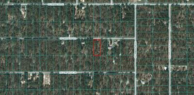 LOT 6 - 00 SW GREEN BAY DRIVE, Dunnellon, FL 34431 - Photo 1