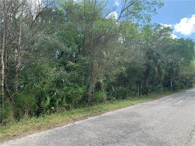 SW GATOR TRAIL, ARCADIA, FL 34266 - Photo 2