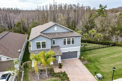 16312 HYDE MANOR DR, TAMPA, FL 33647 - Photo 2