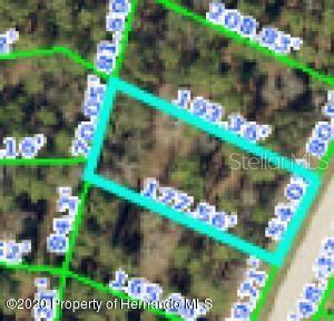 4028 SOUTHERN VALLEY LOOP, Brooksville, FL 34601 - Photo 1