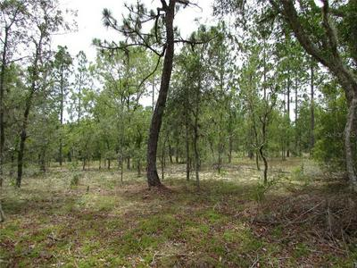 LOT 7 SW SUNSHINE RIDGE RD., Dunnellon, FL 34431 - Photo 2