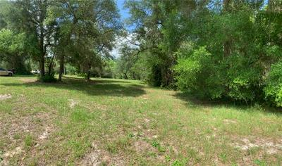 TBD NE 117TH AVENUE, Fort Mc Coy, FL 32134 - Photo 2